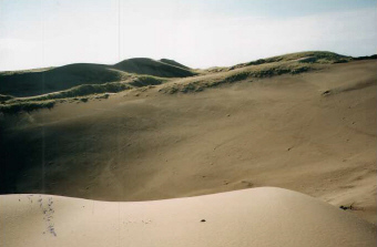 deserto mendoza2.jpg