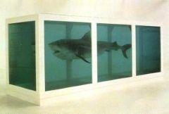 hirst_shark.JPG