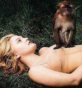 scimmia10.jpg