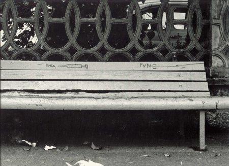 Panchina - foto di Mauro Baldrati