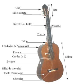 caracteristiques-guitare.png