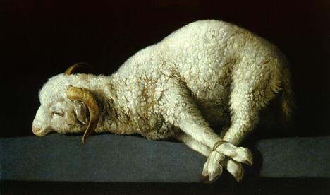 lamb-zurb.jpg