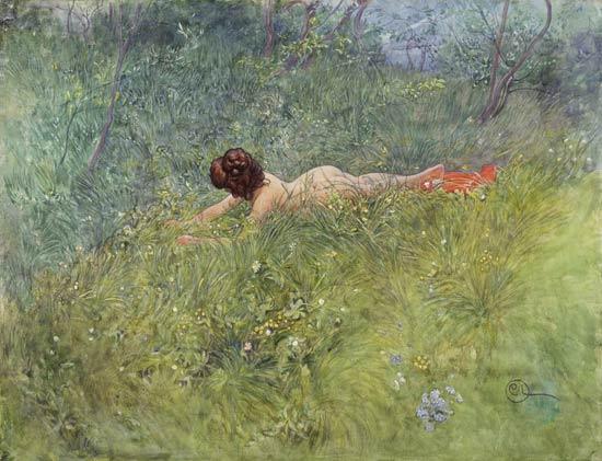 Carl Larrson Nell'erba