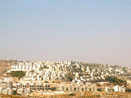 Combattenti per la pace: un viaggio in Palestina (seconda parte)