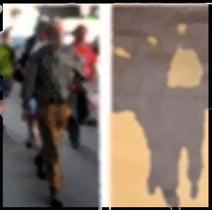 Cammina Vagante. Intervista a Carla Benedetti