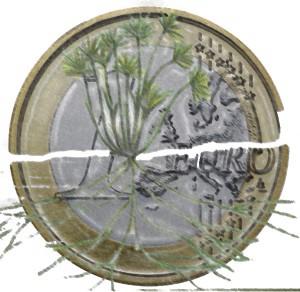 Rosaria Capacchione – Inviato