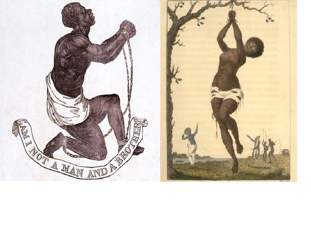 seal +flagellation
