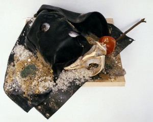 AGATHE SNOW S+M (SALT AND MULCH), 2007  vedi sito per i materiali PERES PROJECTS LA.