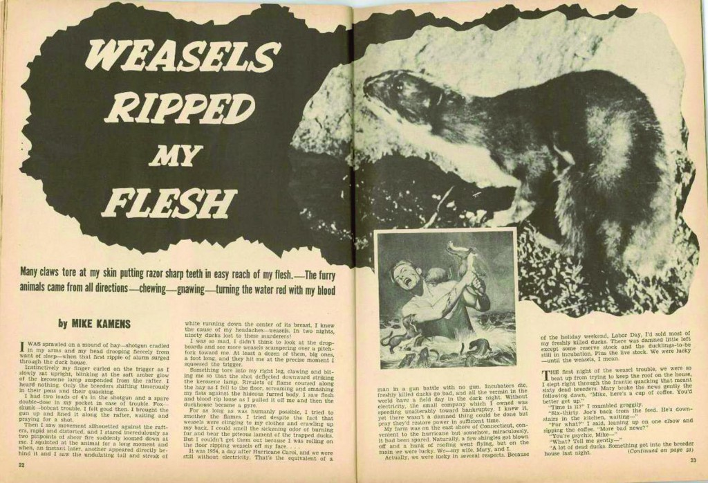 Articolo di «Man's Life»,Weasels Ripped My Flesh, 1956.