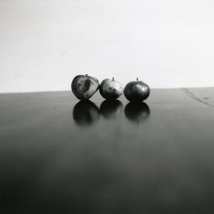 Natura morta di mele a Merano, 2009 - Sabrina Ragucci