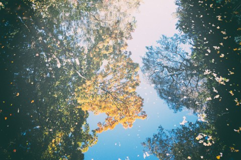 autumnreflection (1)