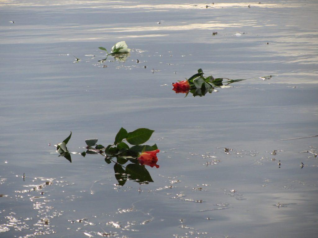 lago fiori