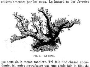 lectures_sur_la_botanique_par_-fabre_jean-henri_picc-jpeg